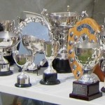 Show trophies on a table
